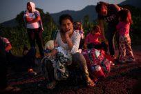Imagem trágica de pai e filha afogados deve impulsionar medidas de prevenção