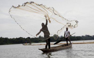 Separados por um conflito, primos centro-africanos anseiam por estudar juntos novamente