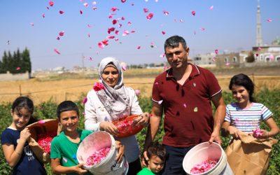 Refugiado decide cultivar flores e constrói nova vida no Líbano