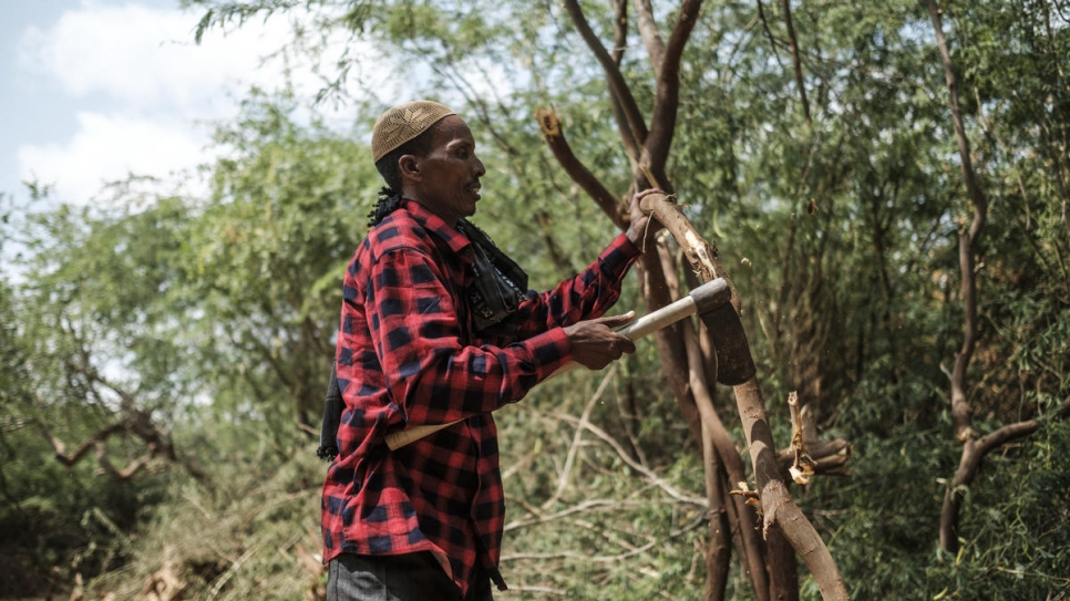 etiop4