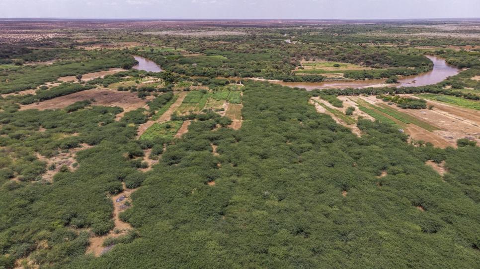 etiop6