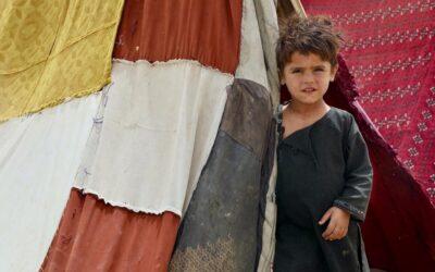 Família afegã deslocada pela violência luta para sobreviver