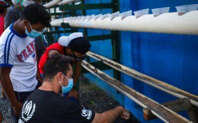 Iniciativas verdes mudam a relação de refugiados e migrantes com meio ambiente em abrigos temporários no Brasil