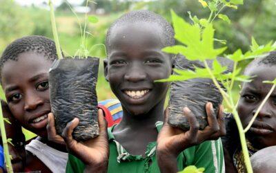 Refugiados em Camarões constroem grande muralha verde para combater a desertificação