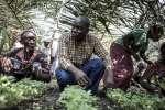 El activista congoleño por los Derechos Humanos, Evariste Mfaume, en e...