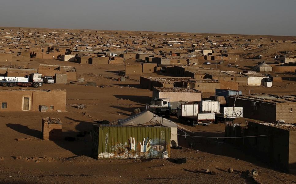 Acnur Refugiados Saharauis En Confinamiento Por Covid 19 Se Ven Afectados Por Una Epidemia Ganadera