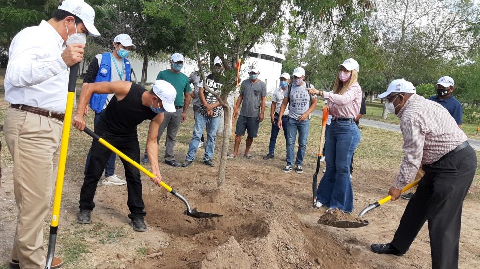 Mas de 200 árboles y plantas nativas de la zona se sembraron durante el proyecto de reforestacion en Matamoros.